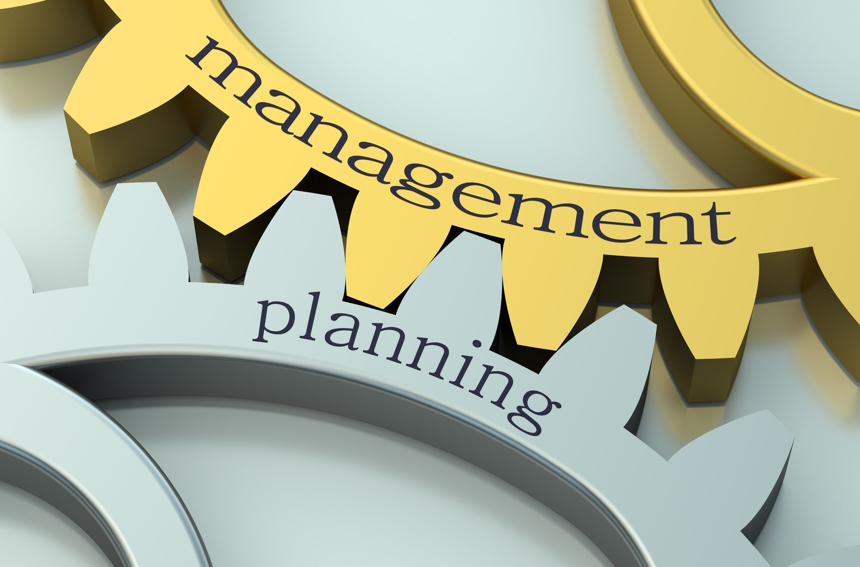 owner's representative planning and management